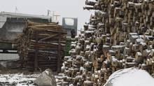 Quebec Sawmill 148 Jobs Affected