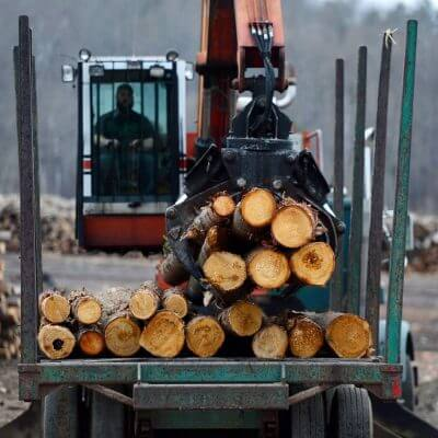 Read more about the article Truck driver shortages hitting Canada's forest products sector