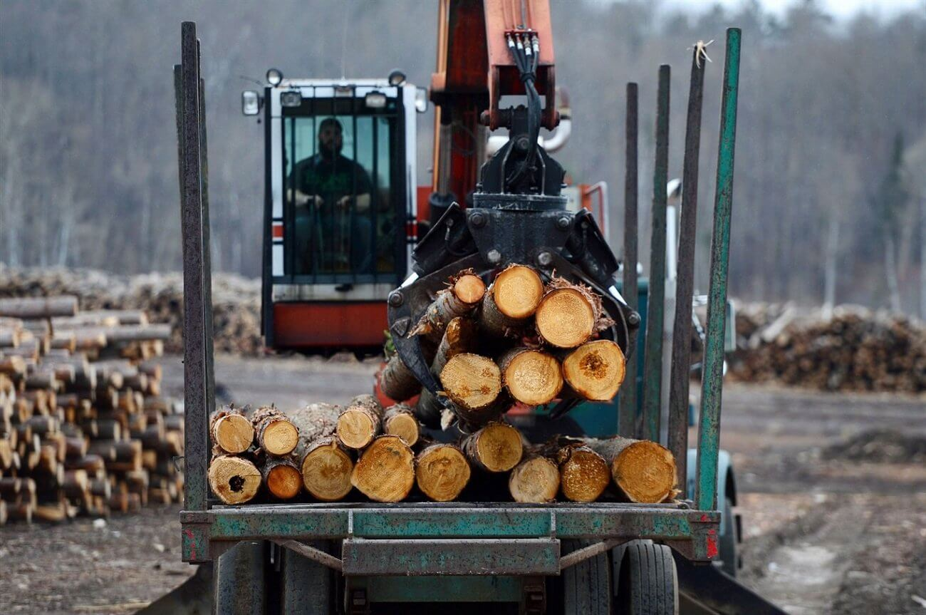 Truck driver shortages hitting Canada's forest products sector