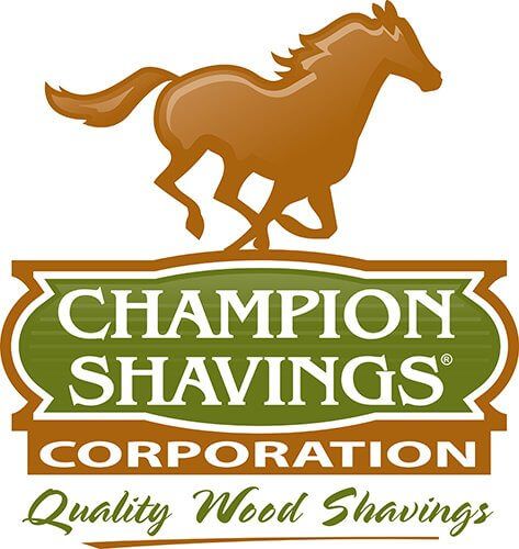 Champion Shavings is Here for You!