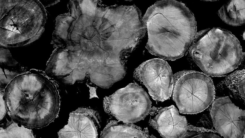 You are currently viewing How Climate Change Helped Fuel the U.S. Lumber Shortage
